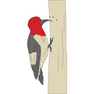 Woodpecker Clip Art.