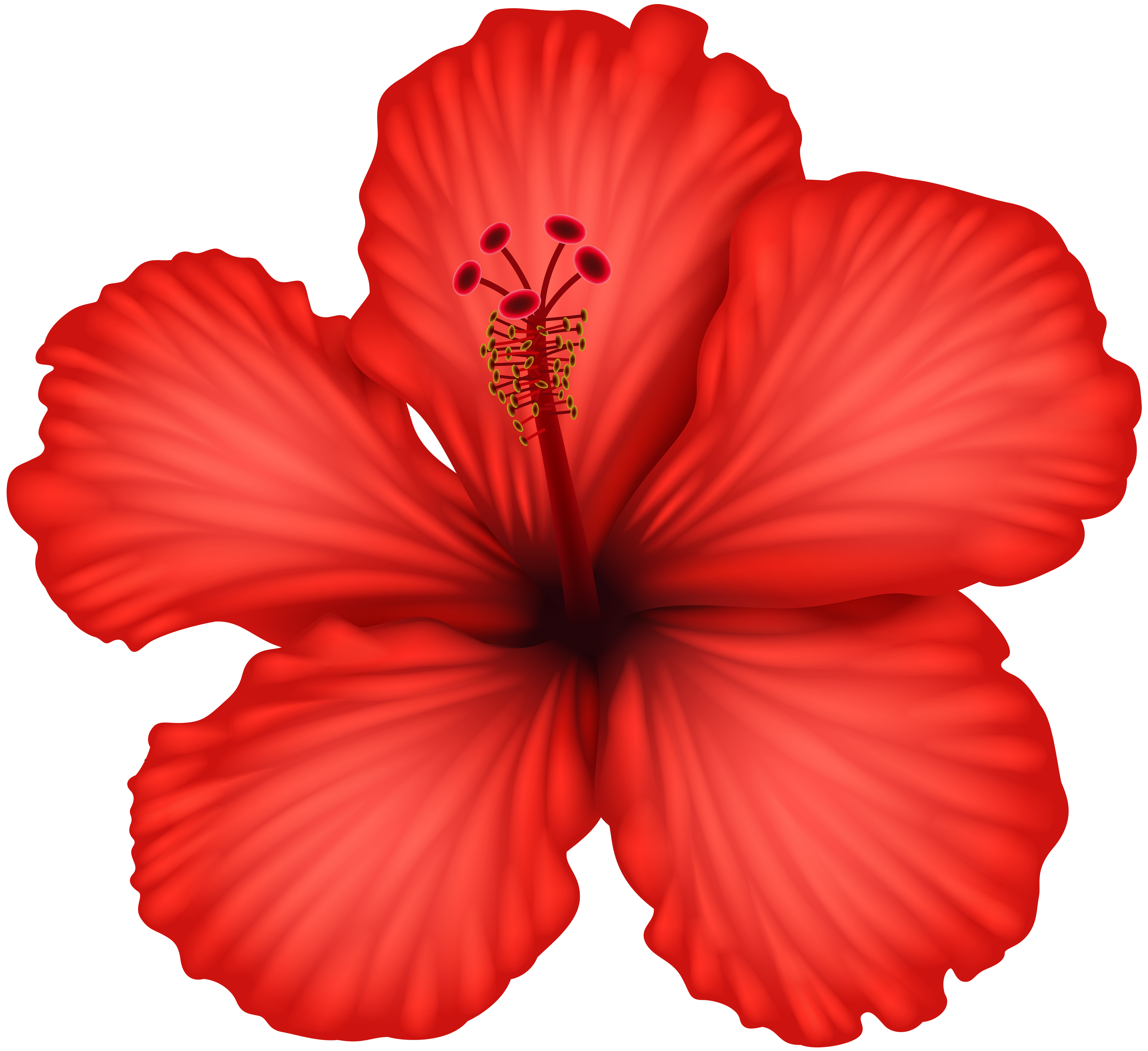 Red Hibiscus PNG Clip Art.