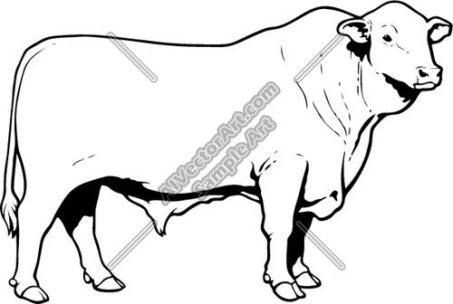 Black Steer Cow Clipart.