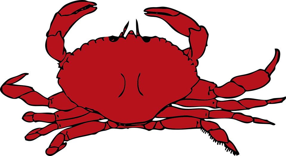 Free vector graphic: Crab, Red, Crustaceans, Seafood.