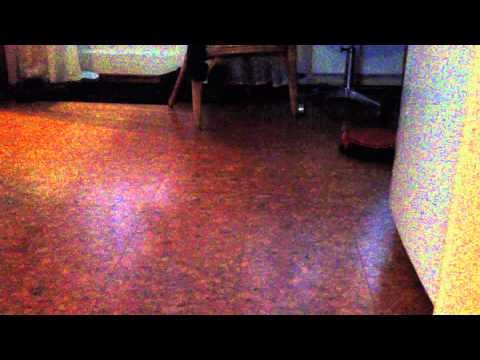 Philips Easy Star robot vacuum.