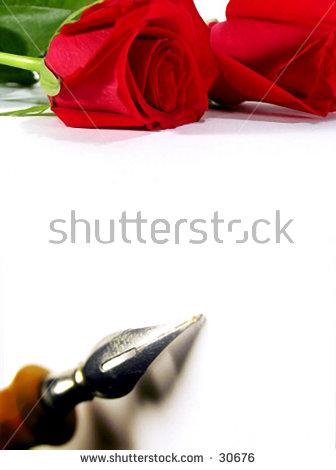 LEACH's Portfolio on Shutterstock.