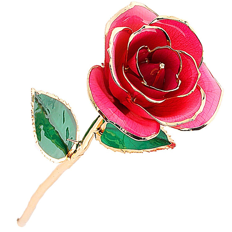 ZJchao Long Stem Dipped 24k Gold Rose Foil Trim , Best Gift for.