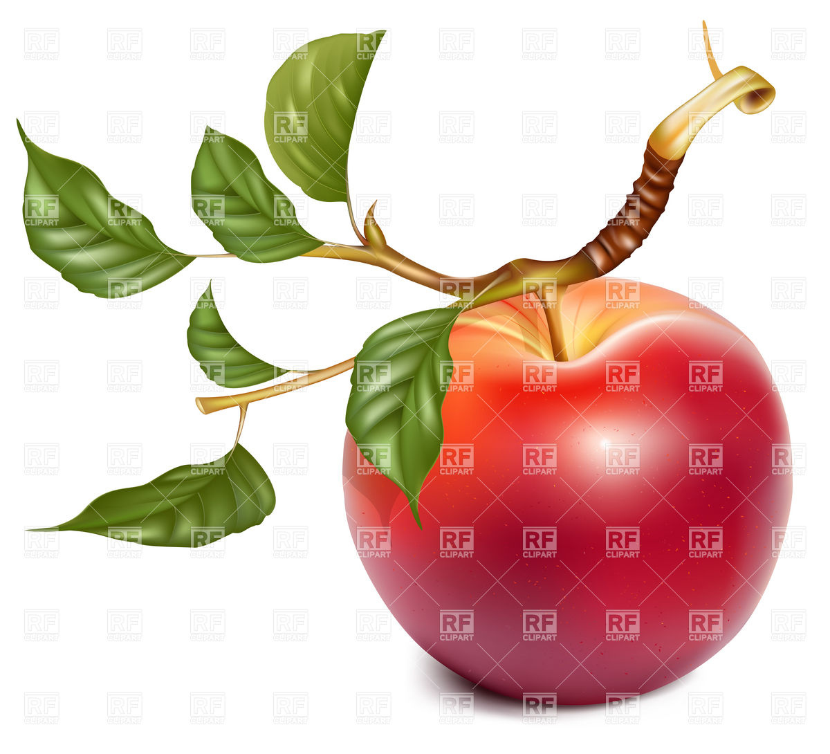 Ripe red apple with twig and leaves Vector Image #4919.