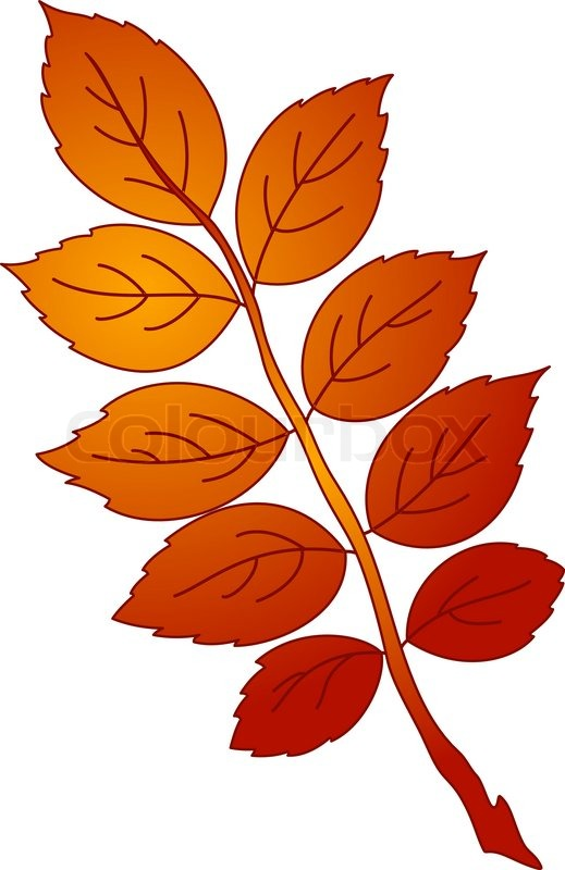 Leaf of dogrose, vector, beautiful nature object, isolated.