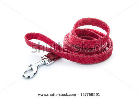 Dog Leash Stock Photos, Royalty.