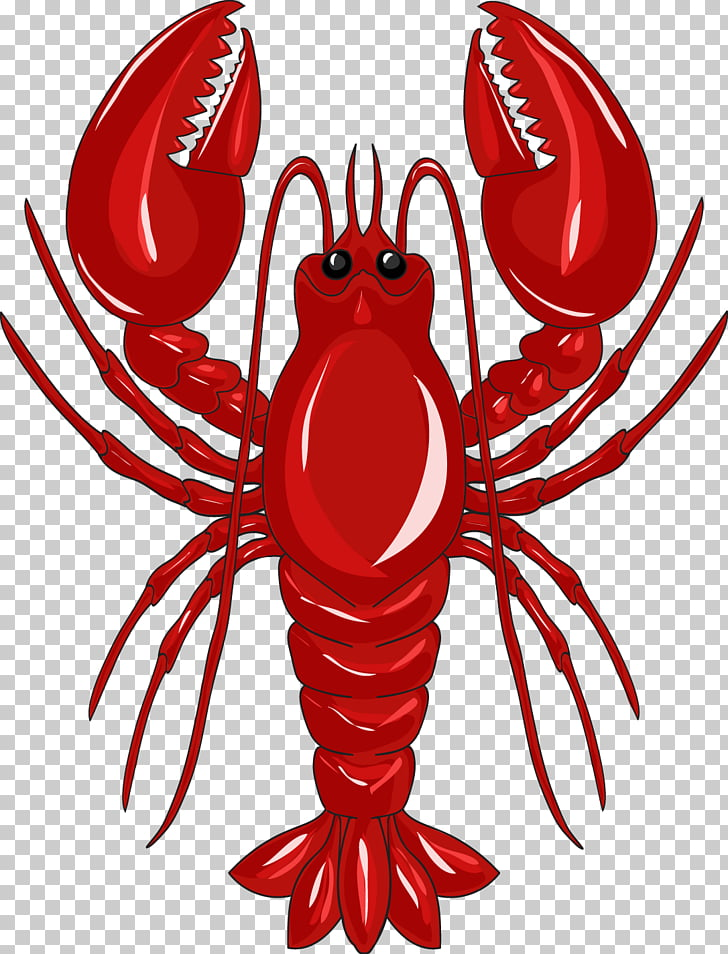 Lobster Crab , Red Lobster PNG clipart.