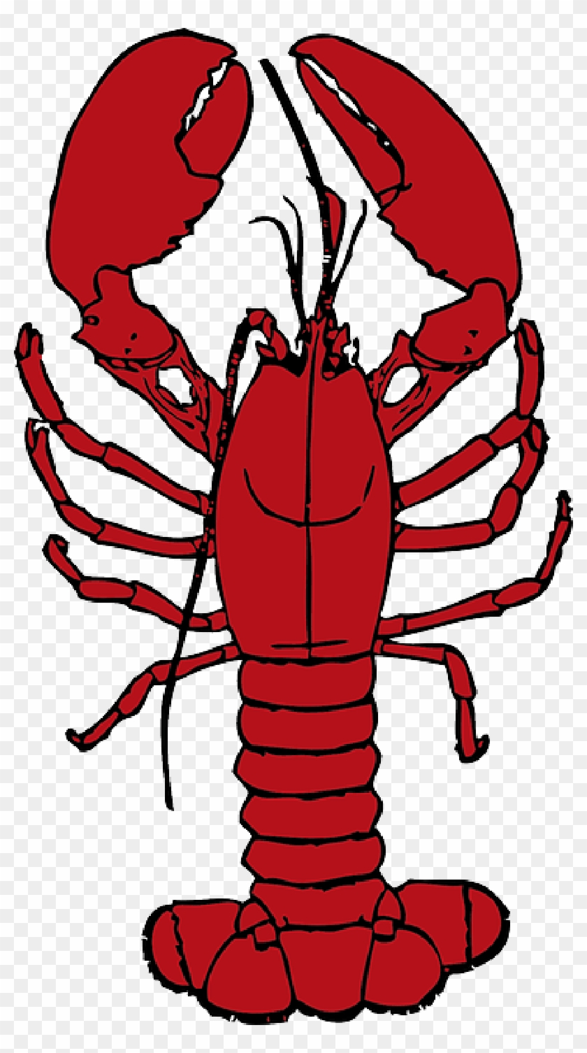 Cartoon, Ocean, Lobster, Crab, Sea, Crustaceans, Hermit.