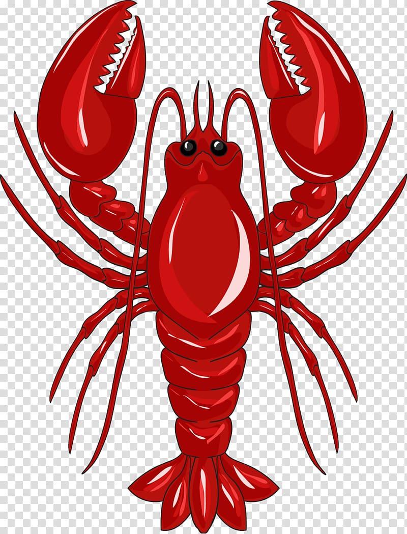 Lobster Crab , Red Lobster transparent background PNG.