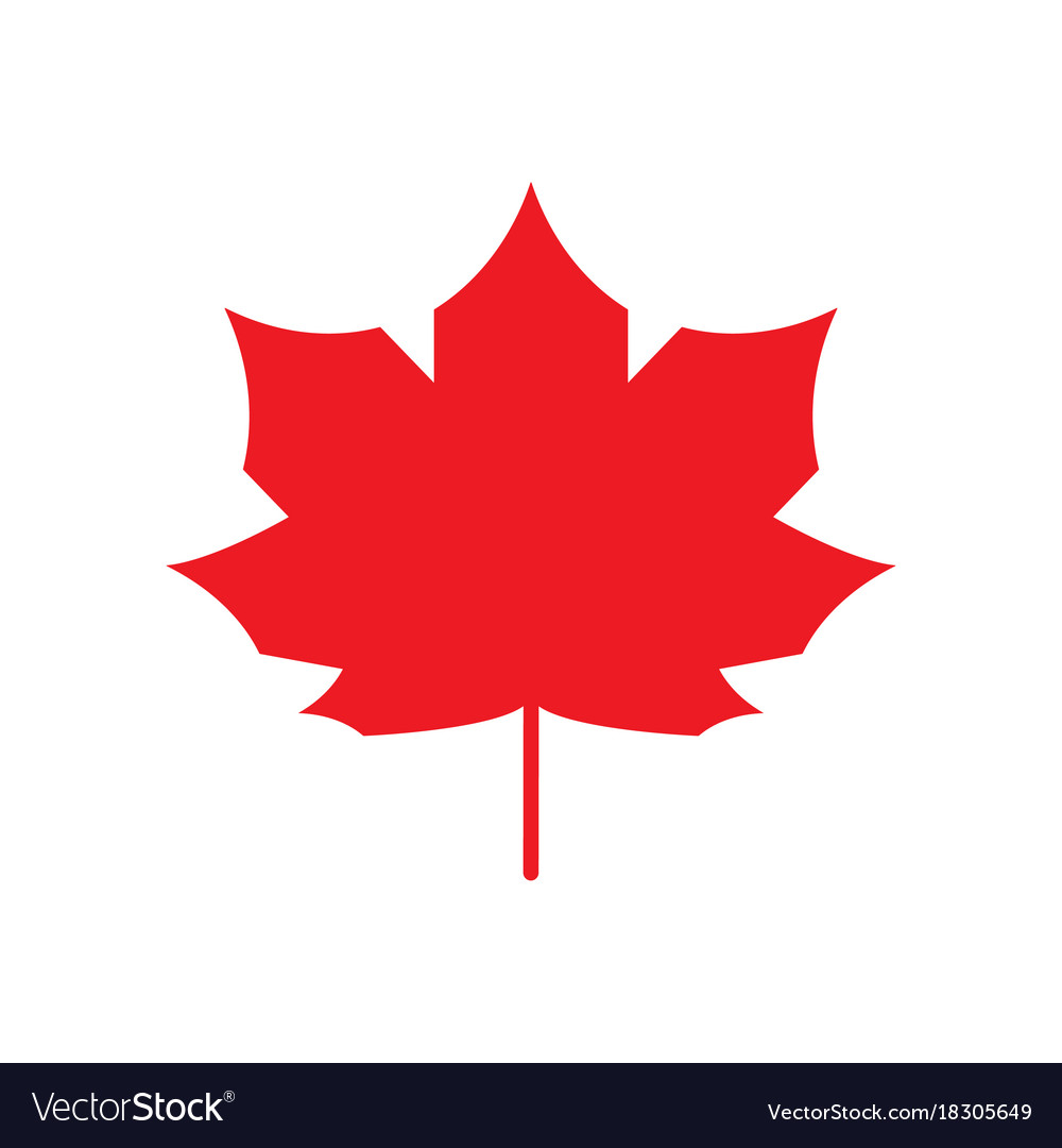 Red maple leaf icon canada symbol autumn leaves.
