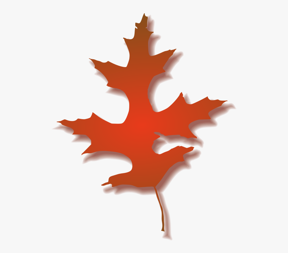 Leaf Clipart Png.