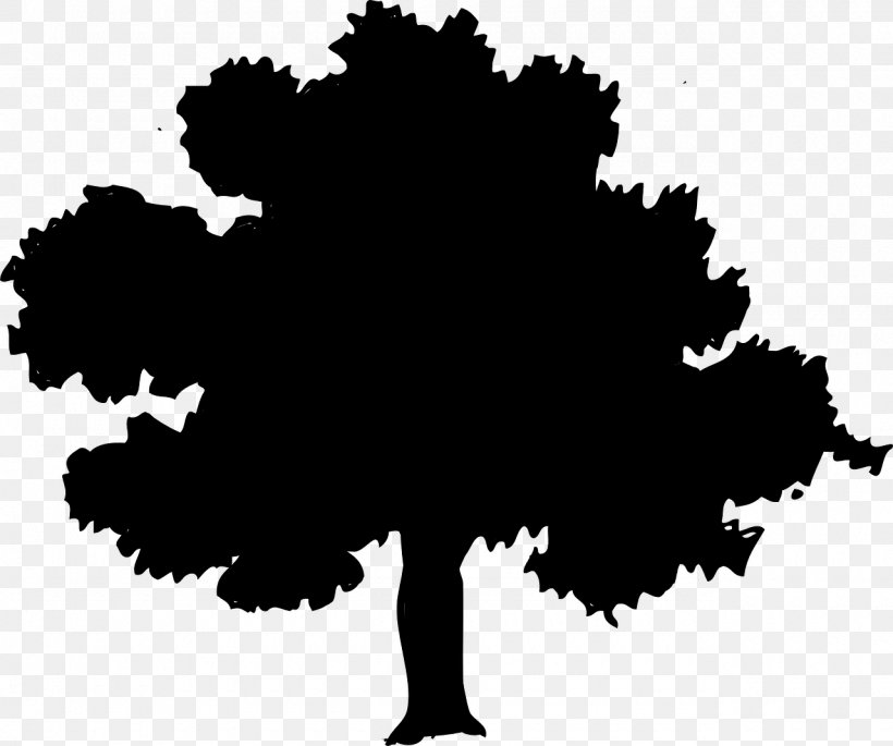 Northern Red Oak Tree Clip Art, PNG, 1280x1070px, Northern.