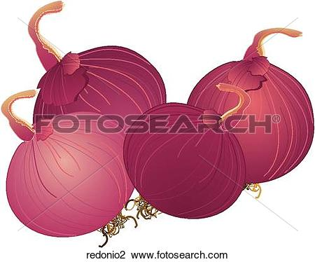 Red onions Illustrations and Clip Art. 23,958 red onions royalty.