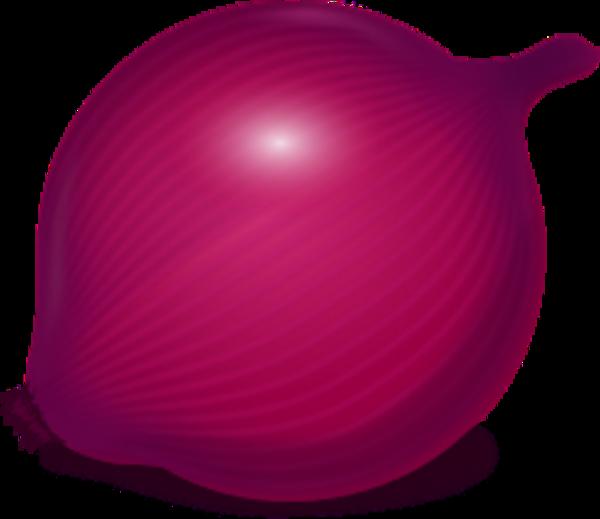 Red Onion Clip Art.