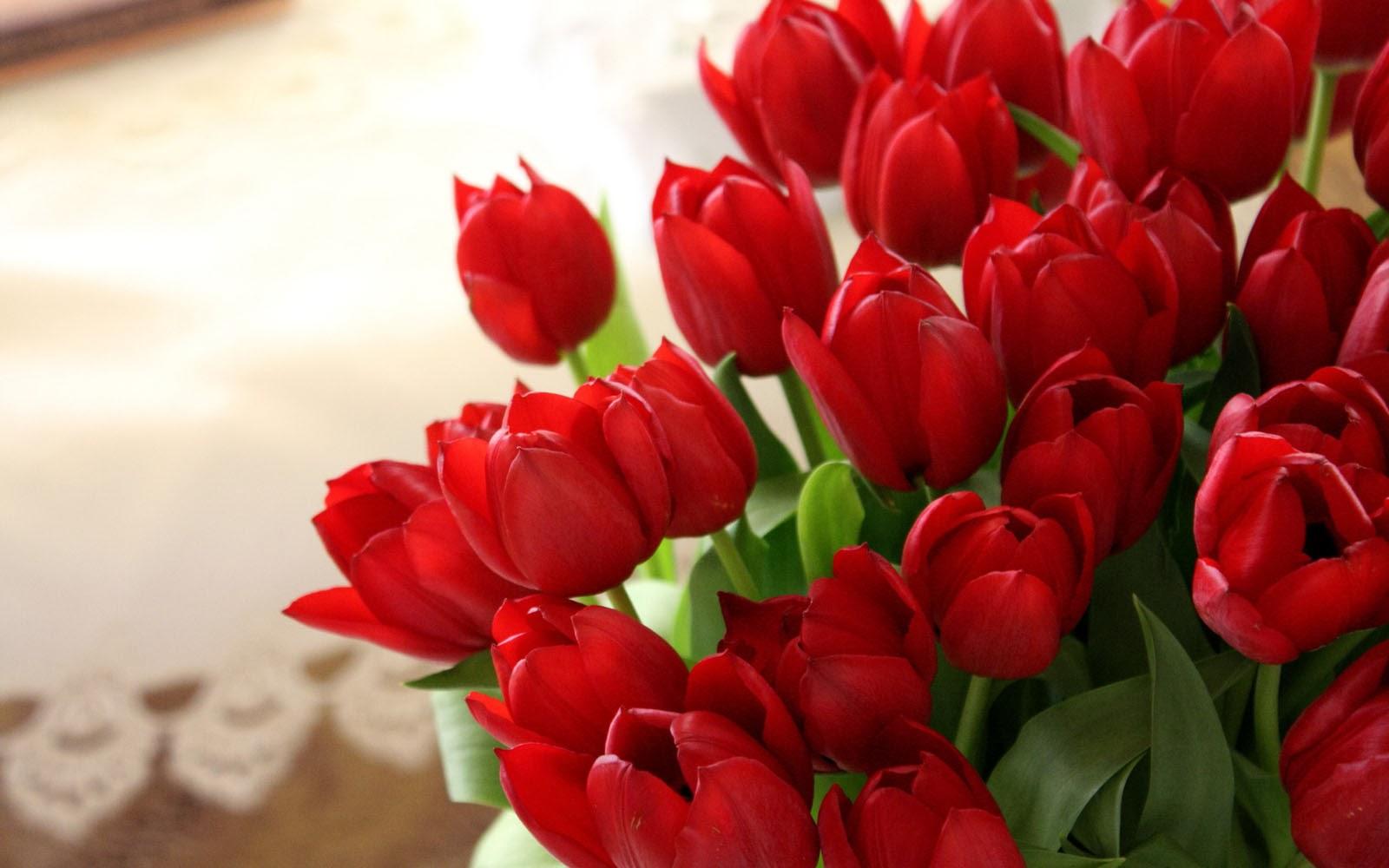 Orange Tulips Bouquet.