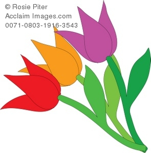 A Purple, Orange, and Red Tulip With Green Stems.