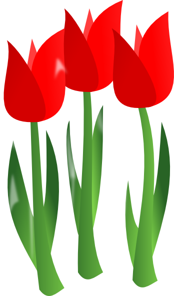 Tulips Flowers Clipart.