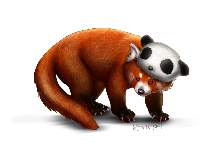 Download Red Panda PNG Picture.