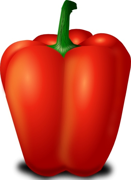 Red Pepper clip art Free vector in Open office drawing svg ( .svg.