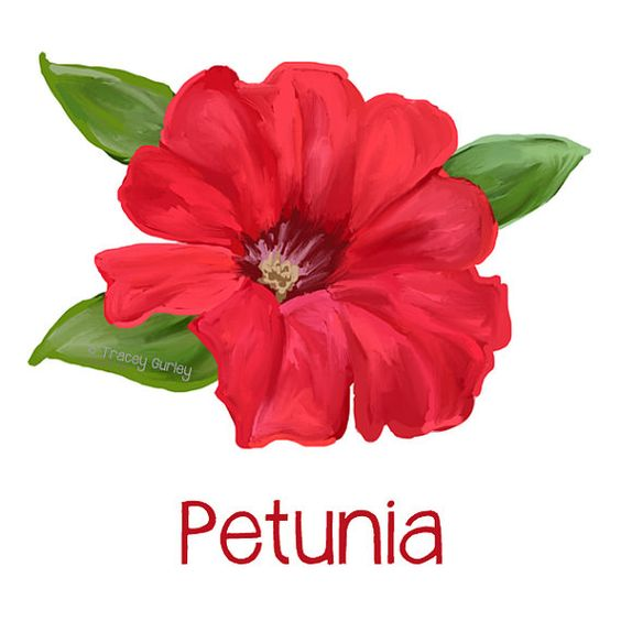 Red Petunia Painting.