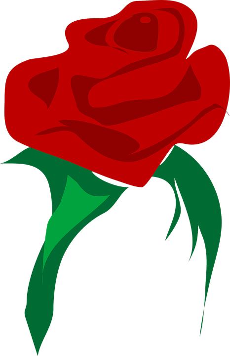 Free vector graphic: Rose, Love, Flower, Red, Plant.