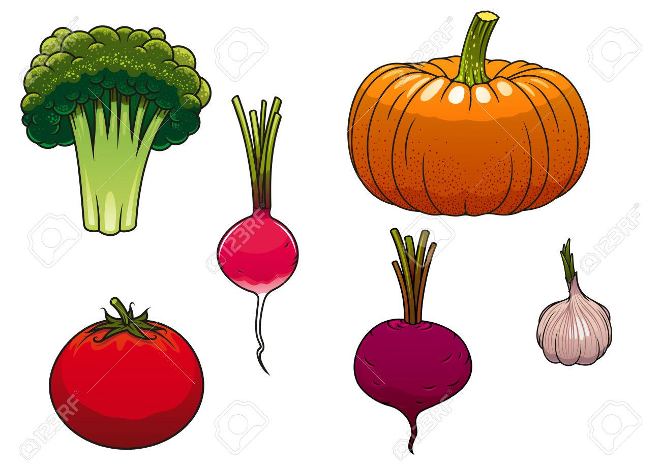 Healthy Ripe Farm Orange Pumpkin, Red Tomato, Green Broccoli.