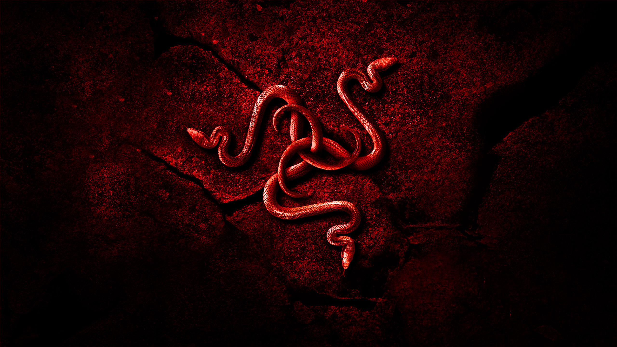 Red Razer Wallpaper HD (78+ images).