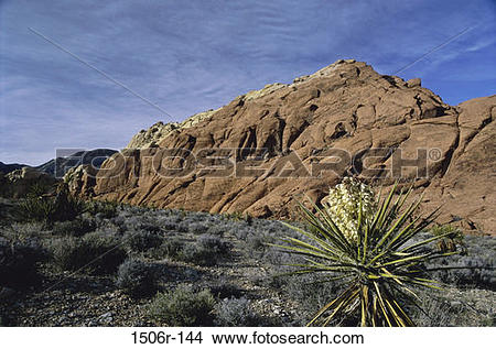 Stock Photo of Red Rock Canyon National Conservation Area, Nevada.