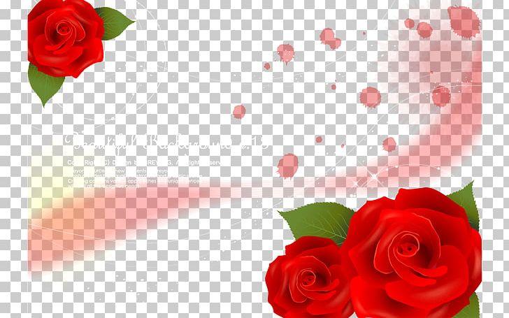 Garden Roses Beach Rose Red PNG, Clipart, Adobe Illustrator.