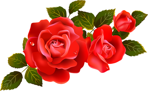 Large Red Roses Clipart Element.