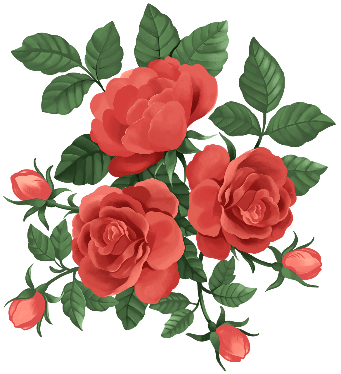 Red roses clipart. Free download..