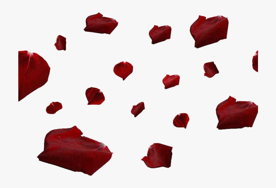 Red Rose Petals Png #1310941.