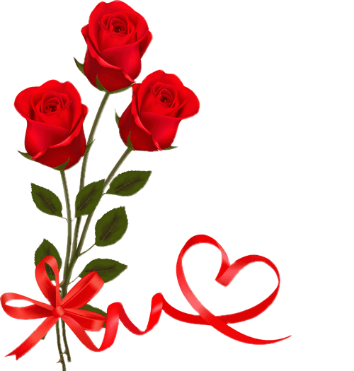 Red Rose With Ribbon Valentine Day PNG Images.