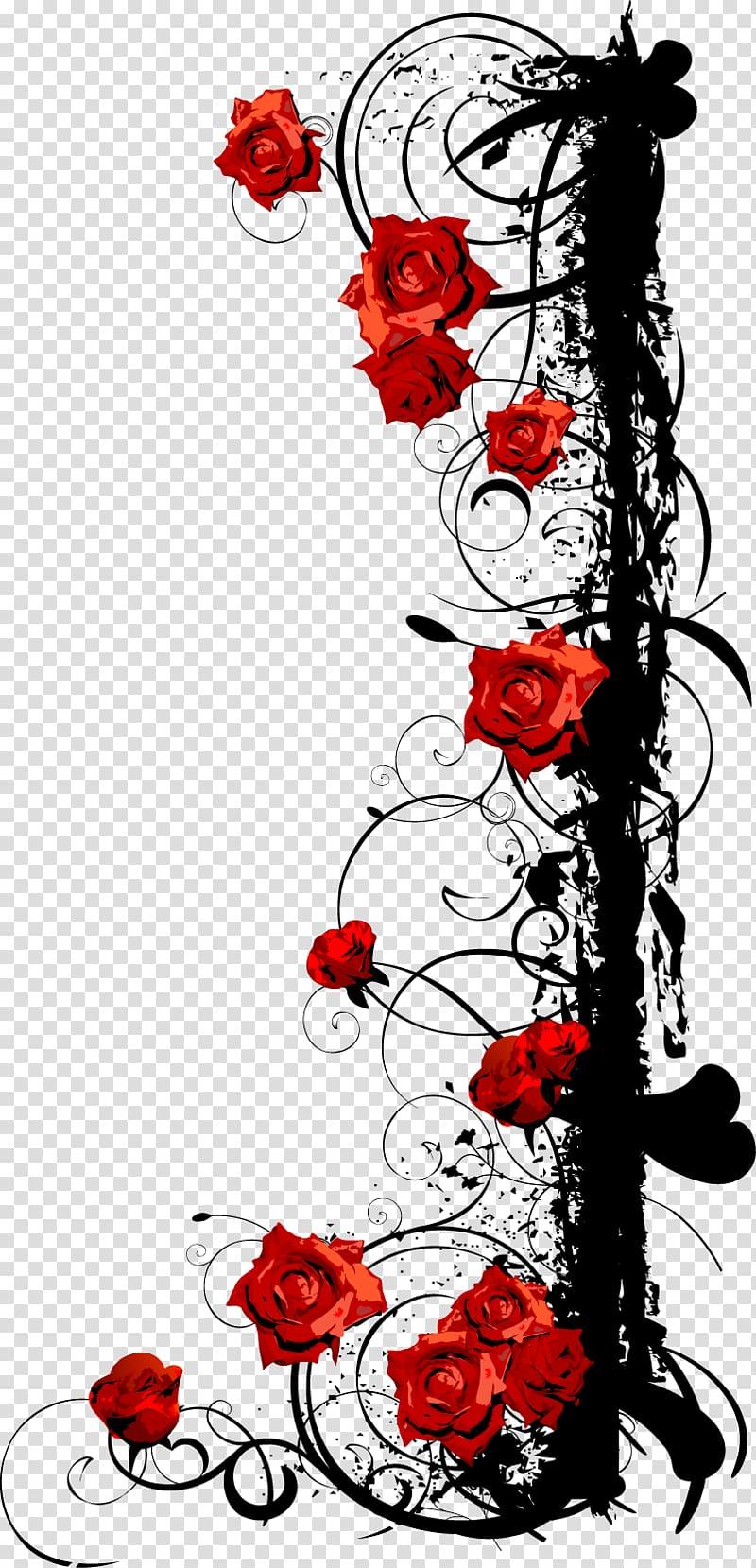 Red rose illustration, Beach rose Euclidean , Rose Vine.