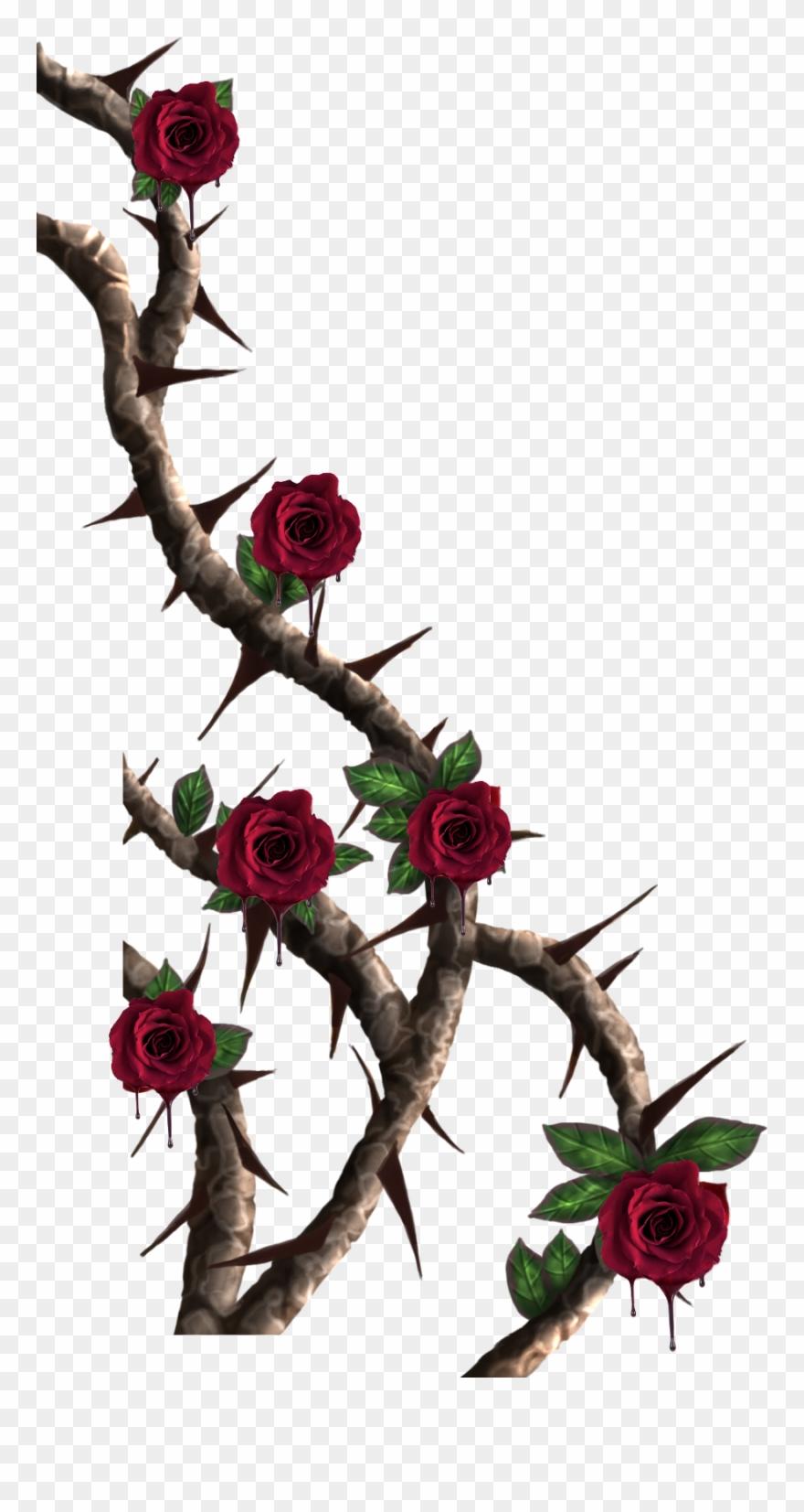 Vines Roses Vine Red.