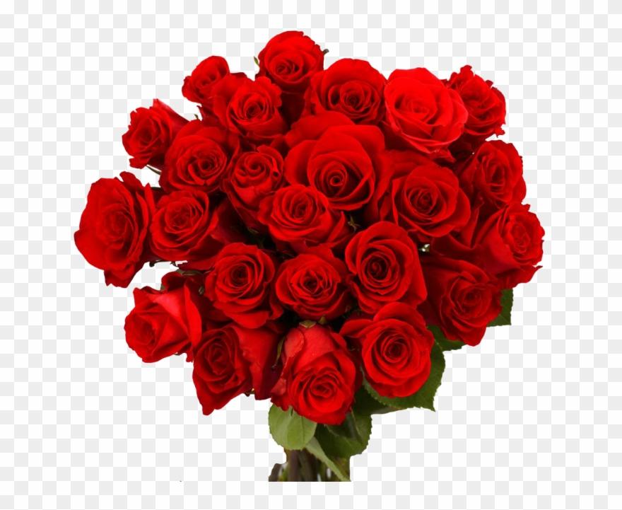 Valentine Day Flower Png Download Image.