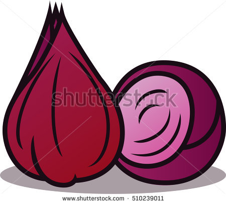 Shallot Stock Vectors, Images & Vector Art.