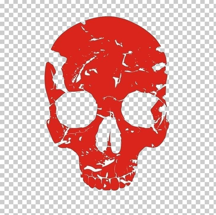 Red Skull Human Skeleton Bone PNG, Clipart, Bone, Color.