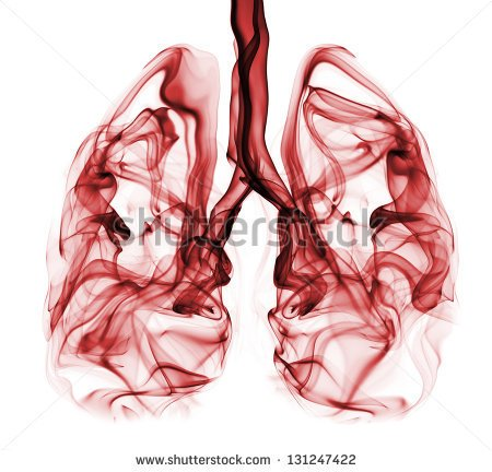 Red Smoke Formation Shaped Human Lungs Stock Photo 131247422.