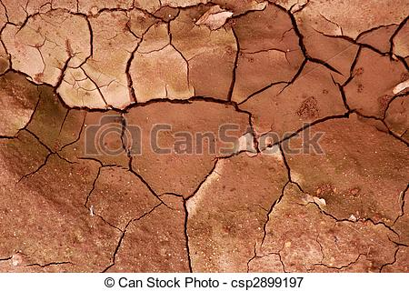 Picture of Clay dried red soil cracked texture background dry.