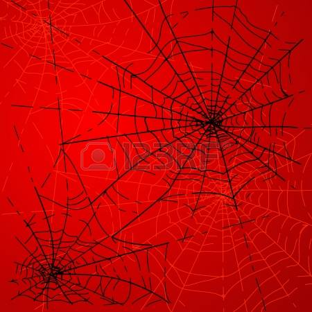 Spiders Stock Photos Images. Royalty Free Spiders Images And Pictures.