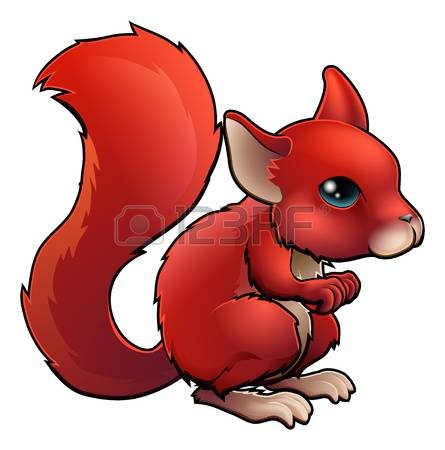 1,287 Red Squirrel Stock Vector Illustration And Royalty Free Red.