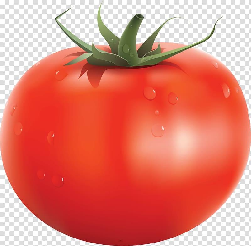 Red tomato , Tomato soup Italian tomato pie Cherry tomato.