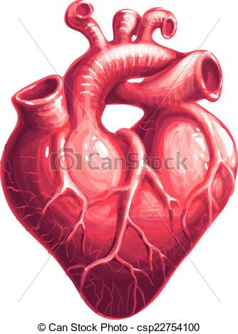 Vector Clipart of Vector heart.