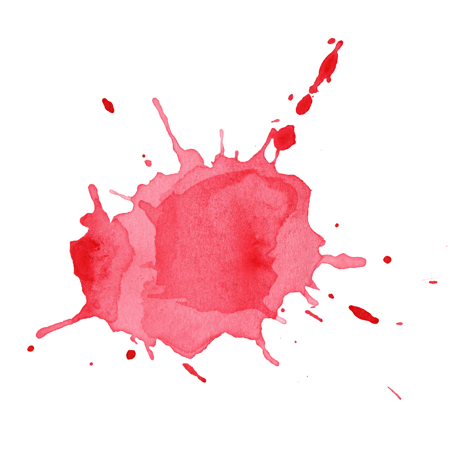 Image result for watercolor splotch logo.