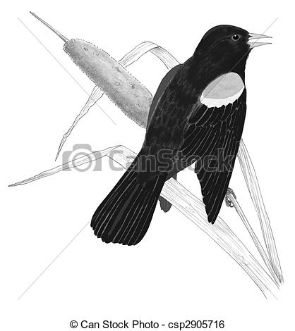 Red winged Clip Art and Stock Illustrations. 12,550 Red winged EPS.