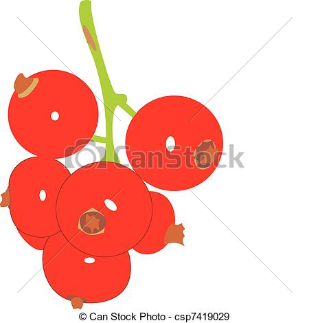 Red currant Clip Art and Stock Illustrations. 894 Red currant EPS.