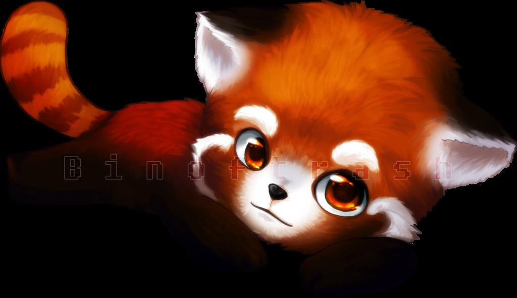 Red Panda PNG Transparent Images.