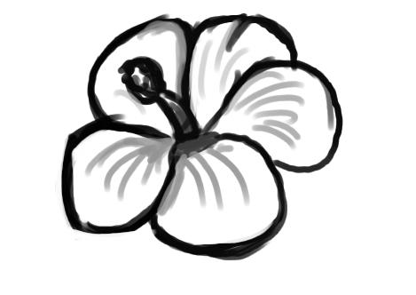 Hawaiian Flower Outline.
