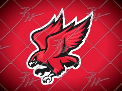 Redhawks Logo Full Body by Ross Hettinger on Dribbble.